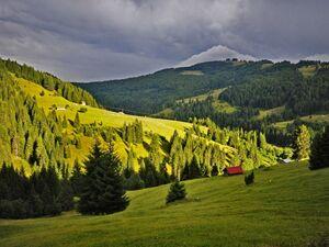 Planina Patkovica Berane