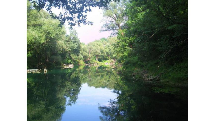 Martinici , Spuz, Danilovgrad
