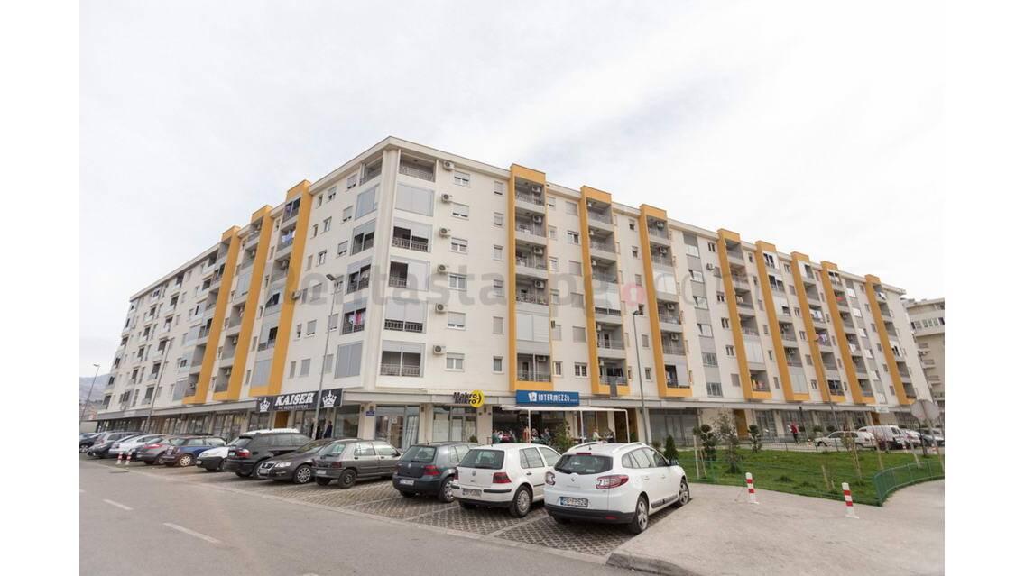 Avda medjedovica, Podgorica