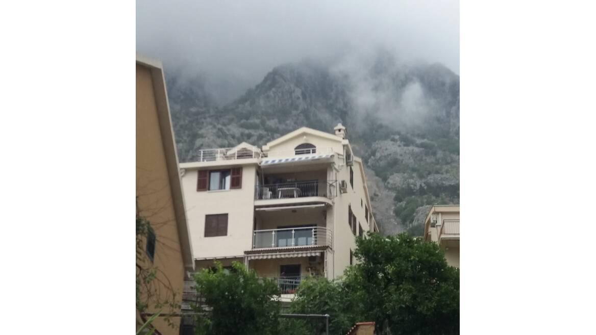 Zlatne Njive, ulica Magnolija, Kotor