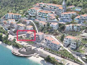 Kostanjica Kotor