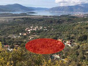 Kavac Kotor