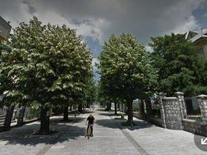 Njegoševa ulica Cetinje